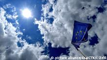 EU Flag (picture alliance/dpa/CTK/I. Zehl)