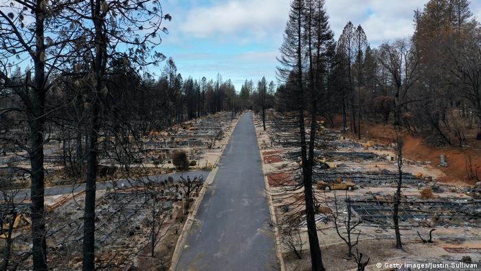 A road in the town of Paradise, after the wildfires