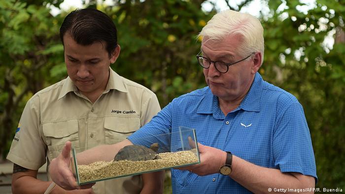 BundeEl presidente alemán asumió el padrinazgo de Alejandra, una tortuga bebé, lo cual lo convierte en un aliado de la herencia natural de las Galápagos. Pero no voy a viajar hasta aquí para alimentarla, bromeó Steinmeier.