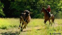Berlinale 2019 Filmstill Ut og stjæle hester | Out Stealing Horses | Pferde stehlen
