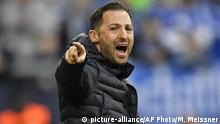 Fußball Bundesliga Schalke 04 vs. SC Freiburg | Domenico Tedesco (picture-alliance/AP Photo/M. Meissner)