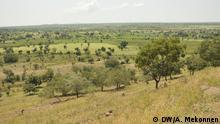 Park in der Region Amhara: 19.02.2019 Copyright: Alemnew Mekonnen (Korrespondent in Bahir Dar)