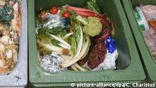 Lebensmittel im Müll Lebensmittelverschwendung