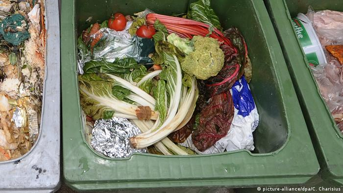 Food waste in a dumpster