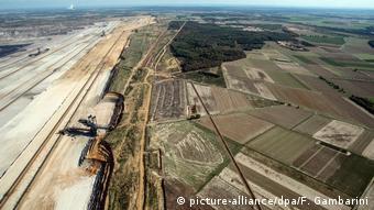 550 hectares de forêt restent encore à sauver