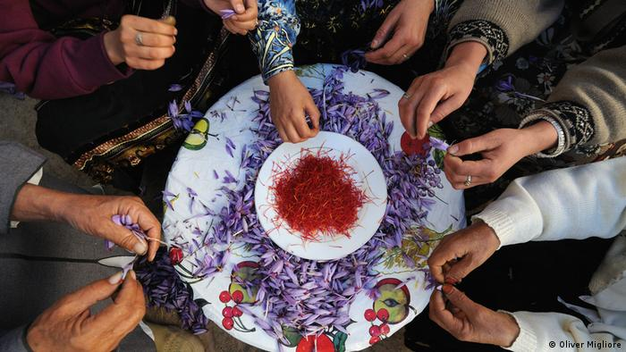 Hands around a plate of flowers. In the center, a bowl of saffron
