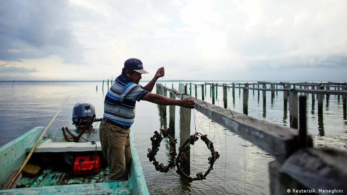 Fischer im Boot (Foto: Reuters/A. Meneghini )