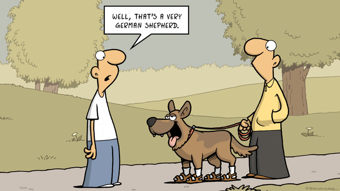 A graphic showing a two men and a dog. A dialog box reads 'Well, that's a very German shepherd'
