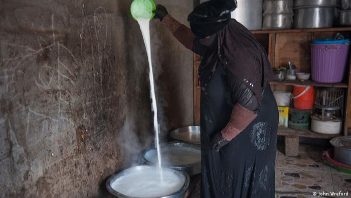A woman pours a long, white stream a milk into a bucket (photo: John Wreford)
