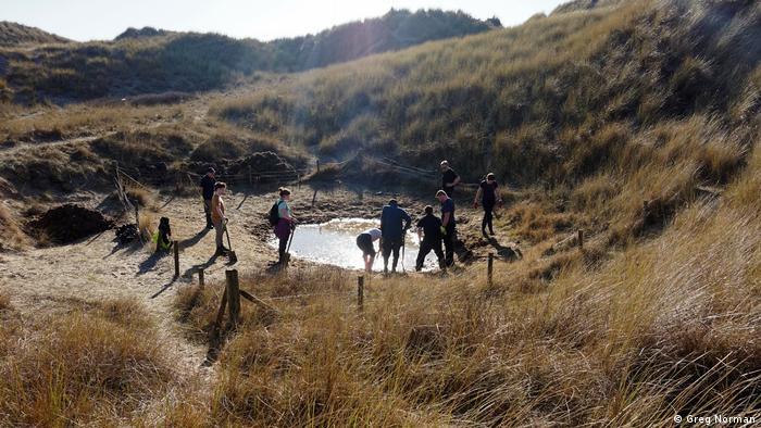 Freiwillige des Projekts Back From the Brink treffen sich in den Dünen von Sefton Coast, Großbritannien, um eine seltene Krötenart vor dem Aussterben zu retten