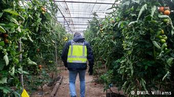 Μετανάστης σε φυτώριο στη Γερμανία