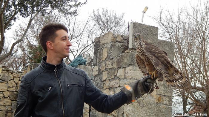 Bosnien-Herzegowina l Jagd mit Falken - Toni Perić