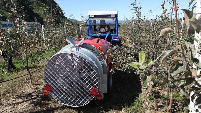 Nordkorea Arbeit in der Apfelplantage