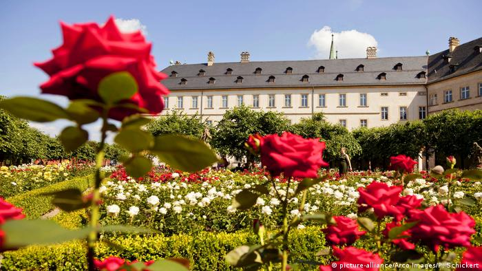 Rose Garden in Bamberg (picture-alliance/Arco Images/P. Schickert)