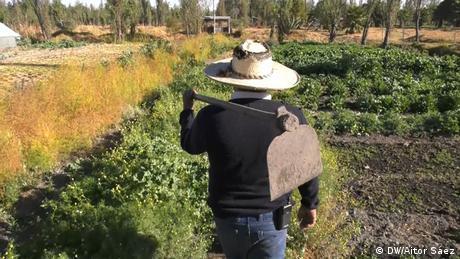 Ein Bauer mit Strohhut und Schaufel ist von hinten zu sehen, er geht über ein grünes Feld.
