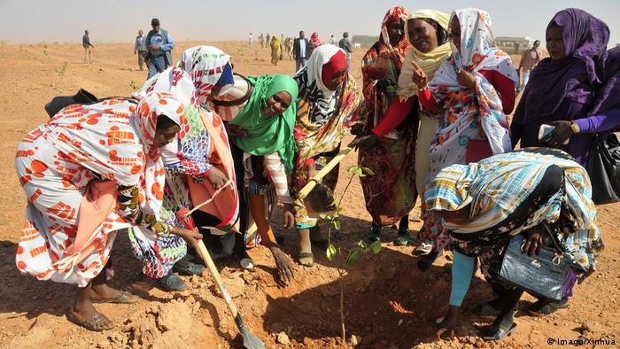 Africa's Green Wall in the Sahel | Sudan