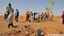 Afrikas Grüne Mauer im Sahel | Sudan