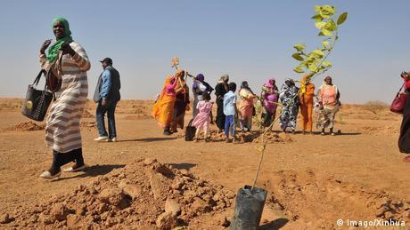 Afrikas Grüne Mauer im Sahel   Sudan