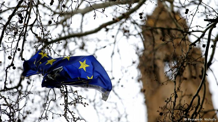 An EU flag is seen stuck in a tree outside the Houses of Parliament in London