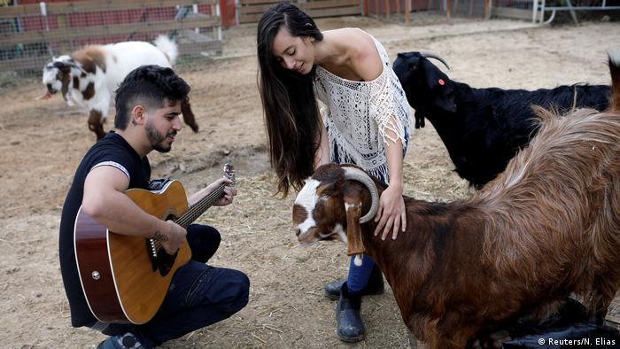 Israel Freedom Farm | Pflege für verletzte Tiere & Tiere mit Behinderung in Moshav Olesh (Reuters/N. Elias)