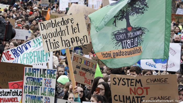 Deutschland Fridays for Future Demonstration in Berlin (picture-alliance/dpa/C. Koall)