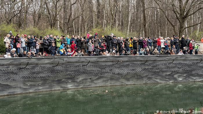 People outside the bear enclosure in Berlin (picture-alliance/dpa/P. Zinken)