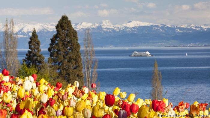 tulips with a lake and mountains in the backdrop (picture-alliance/dpa/A. Schnurer)