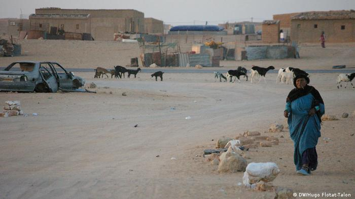 A woman walking along a dusty street with a wrecked car and livestock in the background