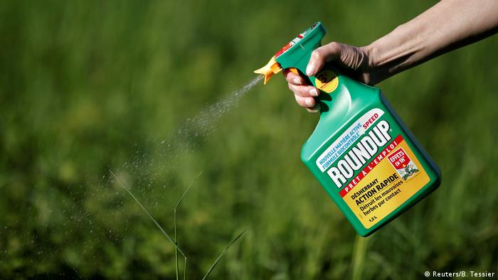 Roundup being used in a garden