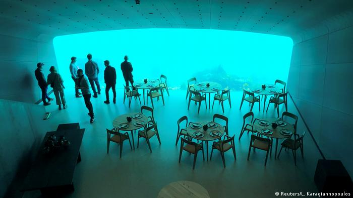 Up to 100 diners will be able to watch the fish as they eat