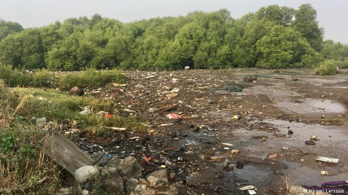 An empty patch of land in a forest with pools of water and trash