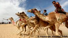 Jockeys, most of whom are children, compete on their mounts during the 18th International Camel Racing festival at the Sarabium desert in Ismailia, Egypt, March 12, 2019. Picture taken March 12, 2019. REUTERS/Amr Abdallah Dalsh