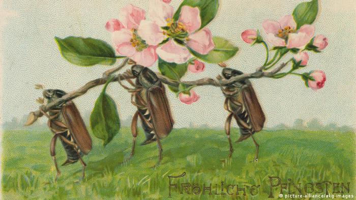 Поздравительная открытка 1905 года ко Дню Святой Троицы