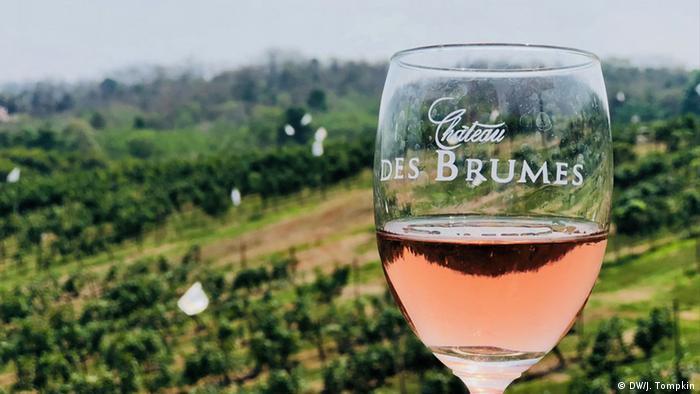 Chateau de Brumes vineyard in Khao Yai wine region of Thailand