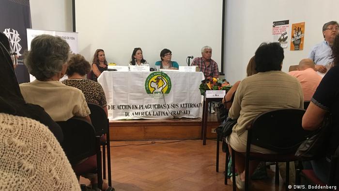 Chile: plantación de avellanos en la Región del Maule (DW/S. Boddenberg)