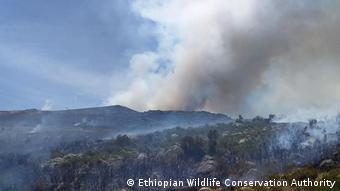 Äthiopien Feuer im Nationalpark Bale Berge