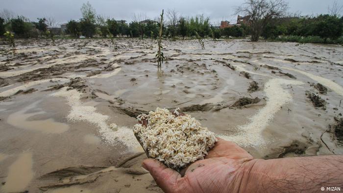 بر اثر سیل اخیر در استان مازندران روستاهای شهر کیاکلا به شدت آسیب دیده و خانههای روستایی دچار خسارات جدی شده است.