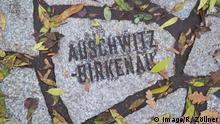 Sinti und Roma Denkmal Deutschland Berlin
