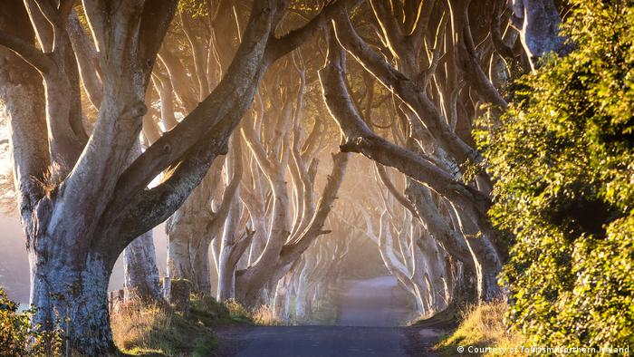 Темна алея, Північна Ірландія