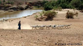 A woman herds goats in the Ogaden region Foto: Shashank Bengali/MCT /Landov +++(c) dpa