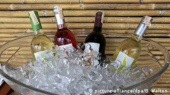 New latitude wines offered in a bowl filled with icecubes