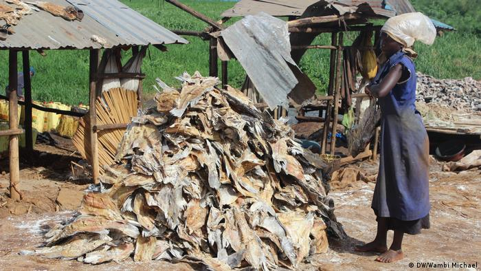 A woman stand in front of a pile of dried Nile perch heads and backbones
