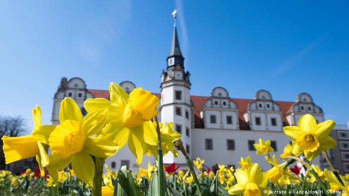 Городской замок-резиденция в Дессау (Саксония-Анхальт)