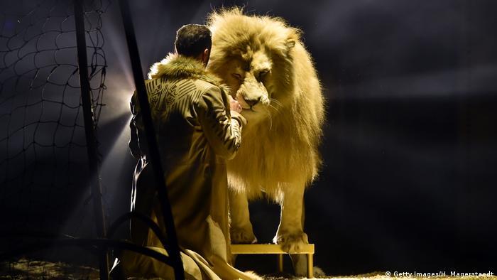 Мюнхенський цирк Krone - єдиний у Німеччині, який використовує на арені диких тварин
