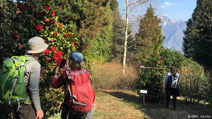 A couple wearing hiking rucksacks photograph a red camelia flower