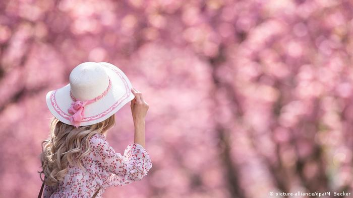 Woman dressed in floral pink shirt wearing a white and pink hat enjoys the cherry blossom scenes unfolding in Bonn.