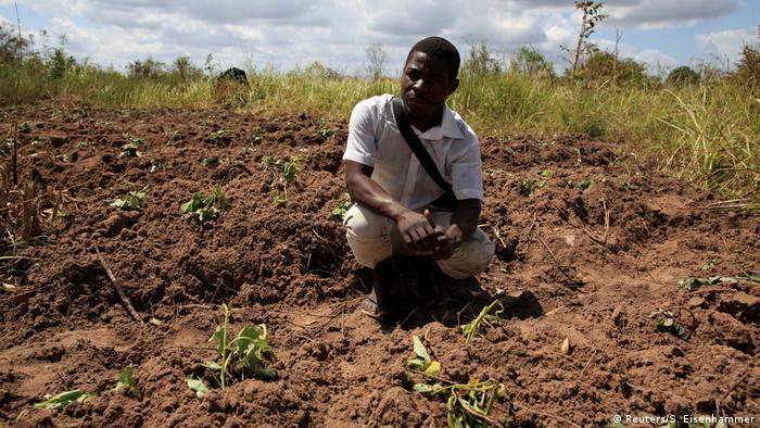 Mosambik Idai Wiederaufbau (Reuters/S. Eisenhammer)