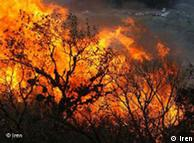 آتشسوزی درود فرامان کرمانشاه