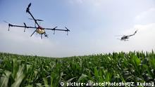 Drohne über einen Feld