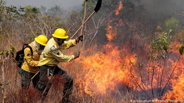 Bombeiros combatem queimada
